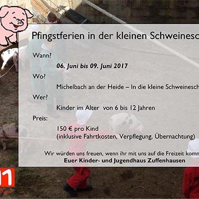 Flyer Kleine Schweineschule 2017